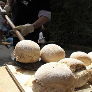 Aralea - Kinderboerderij Mikerf - ambachtelijk gebakken brood