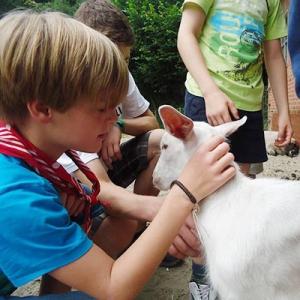 Aralea - Kinderboerderij Mikerf - met de boerin naar de dieren