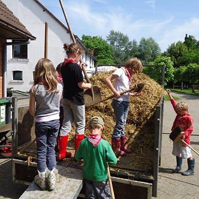 Aralea - kinderboerderij - help boer Kurt