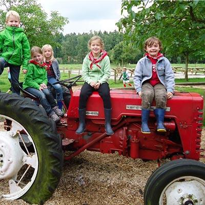 Aralea - Kinderboerderij Mikerf - speeltuin traktor